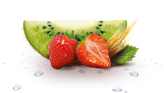 Kiwi-and-Strawberry-333x190.png